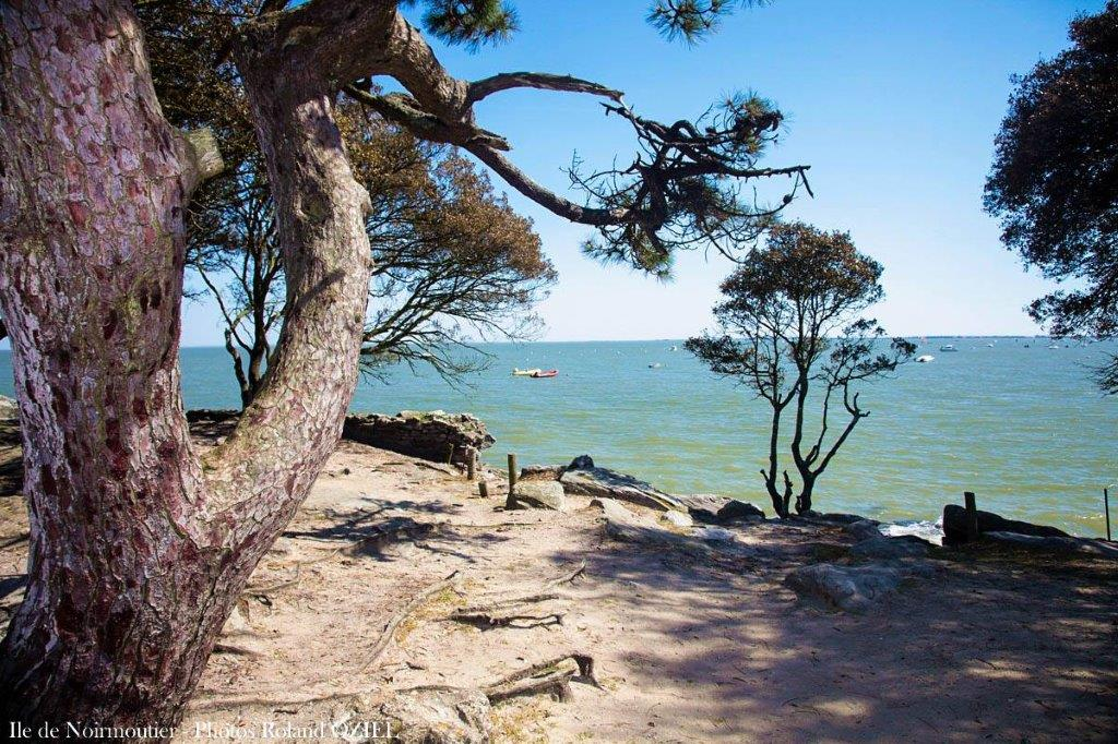 plage Noirmoutier vacances en Vendée